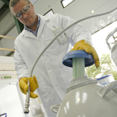online liquid nitrogen training